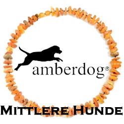 Mittlere Hunde (40-49cm)