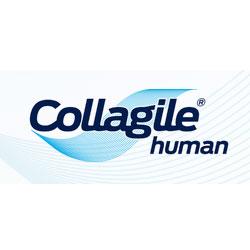 Collagile Human