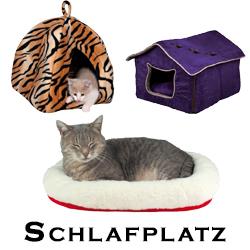 Katzen Schlafplatz