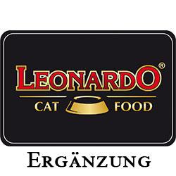 Leonardo Ergänzung