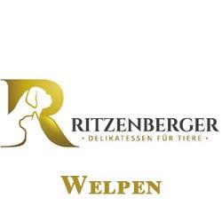 Ritzenberger Welpen