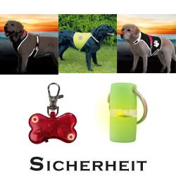 Sicherheit für Hund