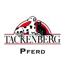 Tackenberg Pferd
