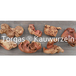 Torgas Kauwurzeln