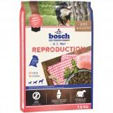 BOSCH Reproduction (Zuchthündinnen)