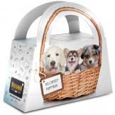 Belcando Puppybox