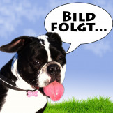 Orijen Freeze-Dried Dog Treats Plains Bison