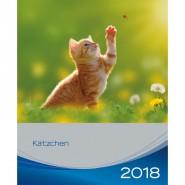 Kalender 2018 Kätzchen