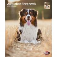 Kalender 2019 Australian Shepherd