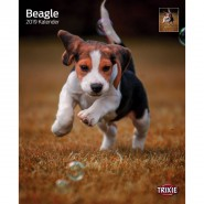 Kalender 2019 Beagle