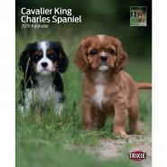 Kalender 2019 Cavalier King Charles Spaniel