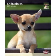 Kalender 2019 Chihuahuas