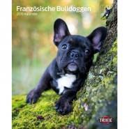 Kalender 2019 Französische Bulldoggen
