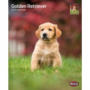 Kalender 2019 Golden Retriever