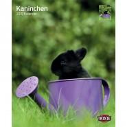 Kalender 2019 Kaninchen