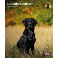 Kalender 2019 Labrador Retriever