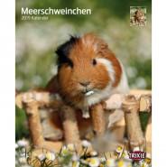 Kalender 2019 Meerschweinchen