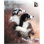 Kalender 2020 Australian Shepherd