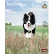 Kalender 2020 Border Collies