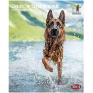 Kalender 2020 Deutsche Schäferhunde