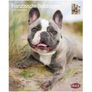 Kalender 2020 Französische Bulldoggen