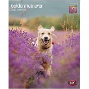 Kalender 2020 Golden Retriever