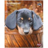 Kalender 2020 Hundewelpen
