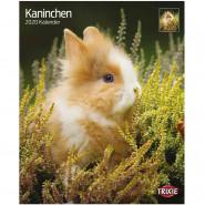 Kalender 2020 Kaninchen
