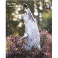Kalender 2020 Katzen