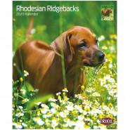 Kalender 2020 Rhodesian Ridgebacks