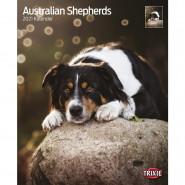 Kalender 2021 Australian Shepherds