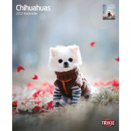 Kalender 2021 Chihuahuas