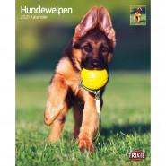 Kalender 2021 Hundewelpen