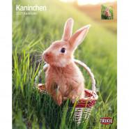 Kalender 2021 Kaninchen