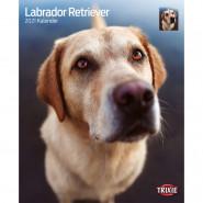 Kalender 2021 Labrador Retriever