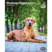 Kalender 2021 Rhodesian Ridgebacks