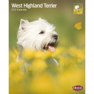 Kalender 2021 West Highland Terrier