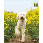Kalender 2022 Golden- und Labradoodle