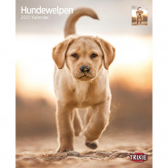 Kalender 2022 Hundewelpen