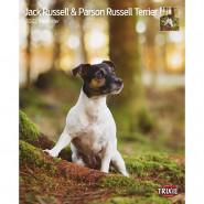 Kalender 2022 Jack Russell & Parson Russell Terrier