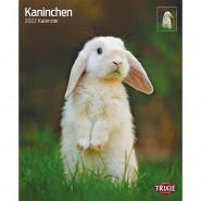 Kalender 2022 Kaninchen
