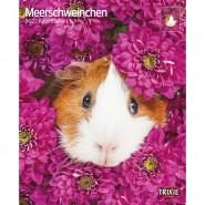 Kalender 2022 Meerschweinchen