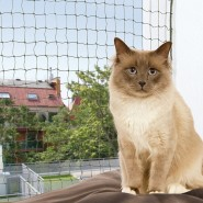 Katzenschutznetz, drahtverstärkt 2 x 1,5 m, oliv-grün