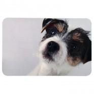 Napfunterlage mit Hundefoto, 43 x 28 cm