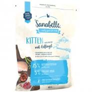 Sanabelle Kitten mit Geflügel