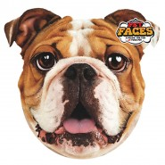 Pet Faces - Englische Bulldogge