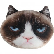 Pet Faces - Grumpy Cat