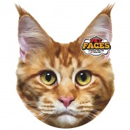 Pet Faces - Maine Coon Katze