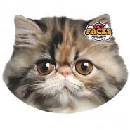 Pet Faces - Perser Katze