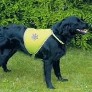 Sicherheitsweste für Hunde